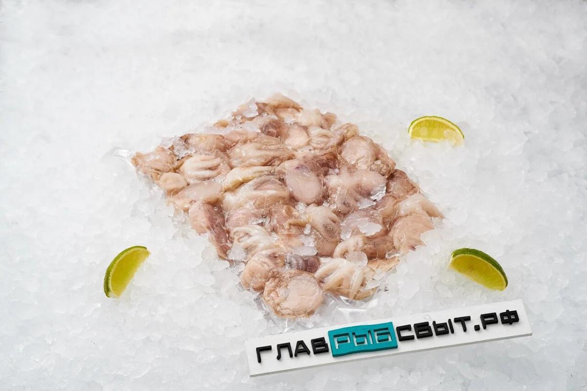 Беби-осьминоги 60/80 (свежеморож.)